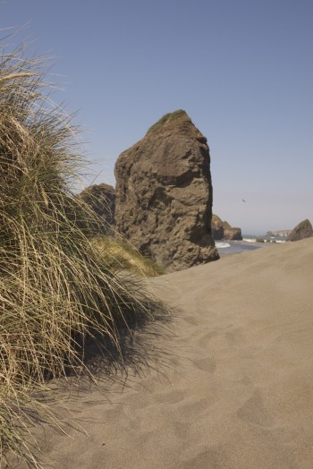 Rocky Beach - Oregon Coast